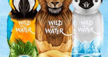 Bouteille d'eau Nestlé Pure Life gratuite