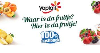 Yaourts Panier de Yoplait 100% remboursé