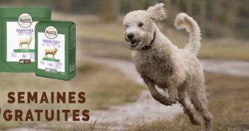Test gratuit des aliments pour chiens Nutro avec Dogofriends