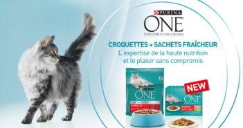 Échantillon gratuit de nourriture pour chats Purina One