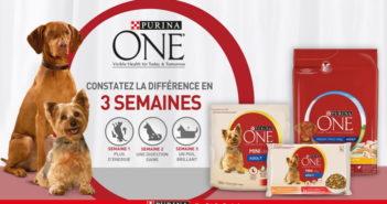 Aliments pour chiens Purina One 100% remboursé